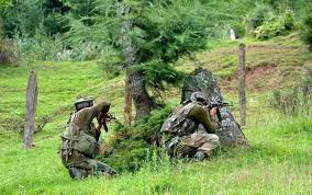 Encounter Started in Tral Forests in South Kashmir…….
